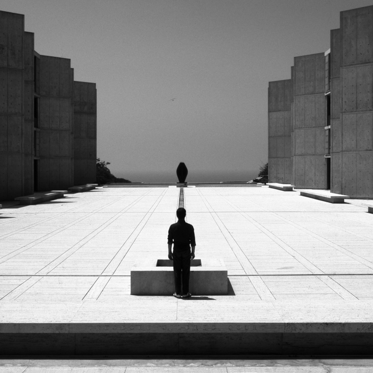 © Wei-ming Yuan, Salk Institute for Biological Studies, 1993, Courtesy KLV Art Projects